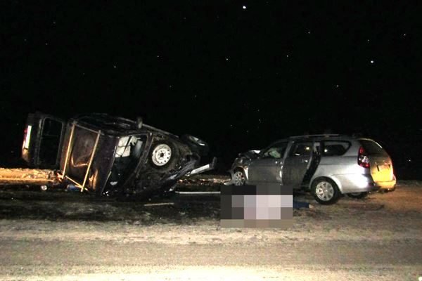 В Давлекановском районе столкнулись Нива и Приора: погибли два человека