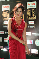 Videesha in Spicy Floor Length Red Sleeveless Gown at IIFA Utsavam Awards 2017  Day 2  Exclusive 34.JPG