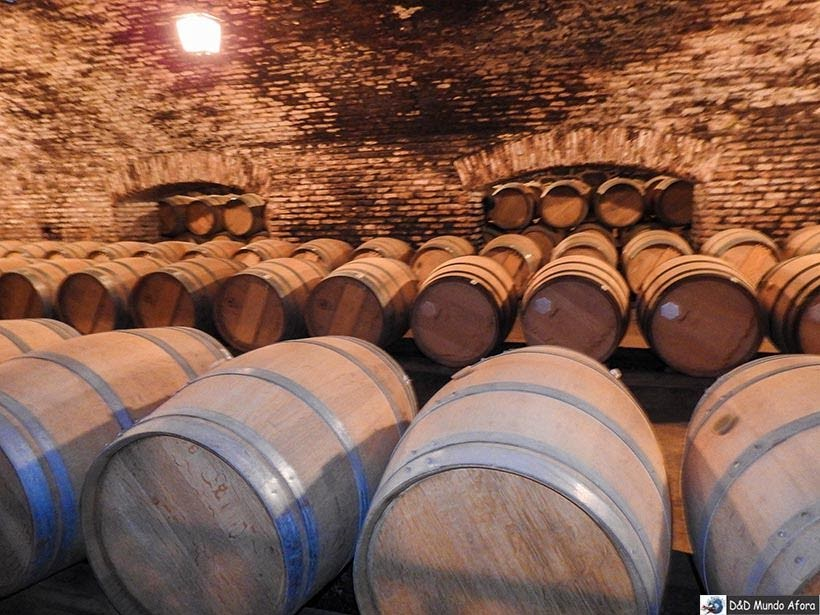 Adega do vinho Casillero del Diablo na Vinícola Concha y Toro - Vinícolas chilenas