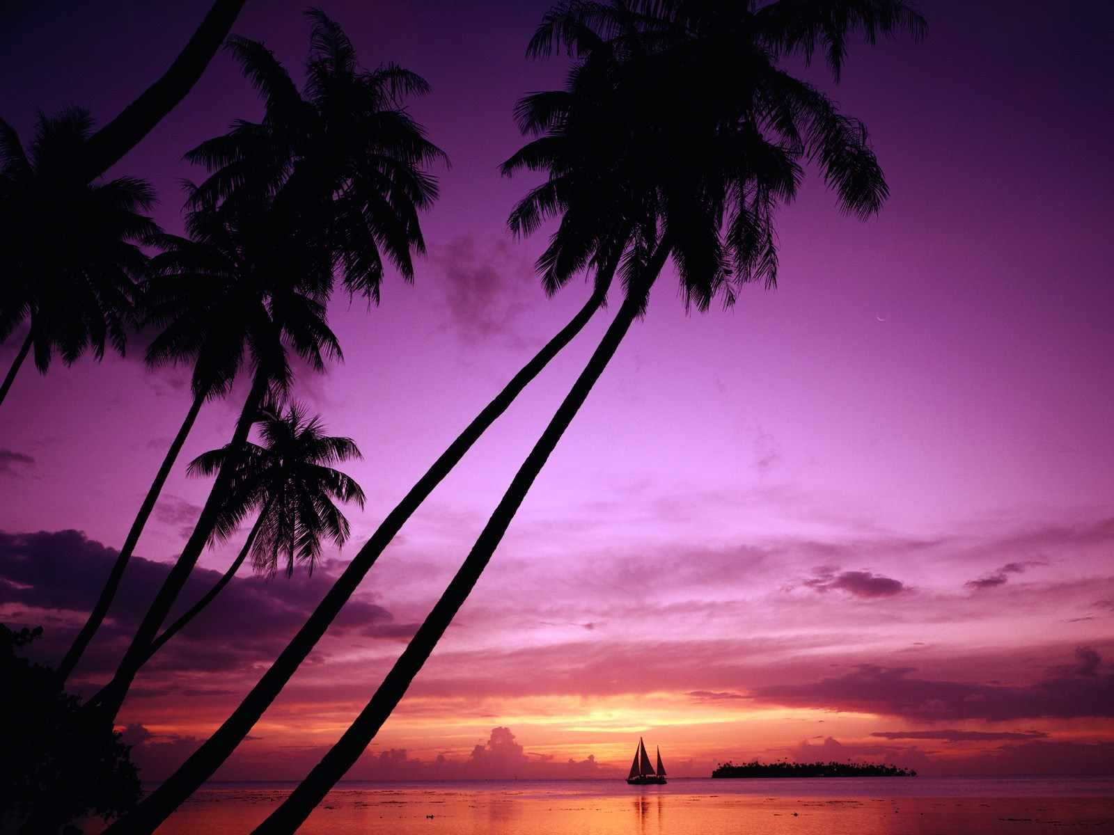 Purple Wallpaper Hd Imagenes De Para 237 Sos Tropicales Playas Paradis 237 Acas Beach