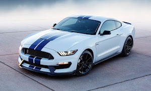 Car Wallpapers Shelby Mustang Ford Sports Car