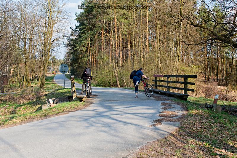 lasy,rowerem,Mielec,puszcza sandomierska,Chyki-Dębiaki