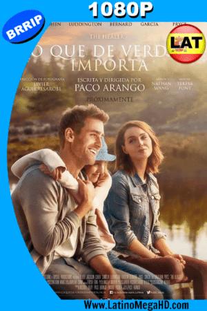 Lo que de Verdad Importa (2017) Latino HD 1080P ()