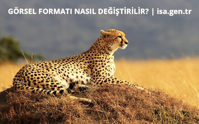 görsel formatı değiştirme