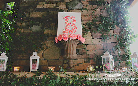 Rustic Pink Baby Shower