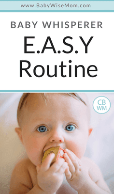 Baby Whisperer E.A.S.Y. Routine. All about the E.A.S.Y. Routine and how routine impacts different temperaments.