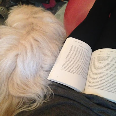 Reading with Trixie Belle