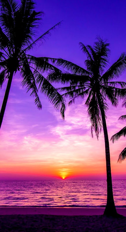 Cool Wallpapers Sunset