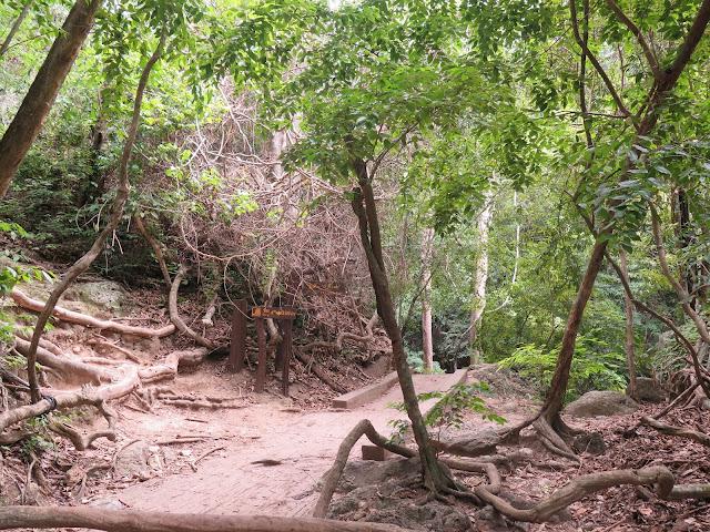 Caminos y senderos de las Cascadas Erawan
