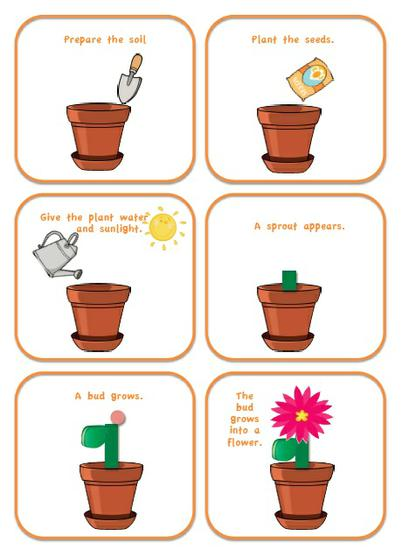 Here are some steps that you need to know if you want to grow a plant ...