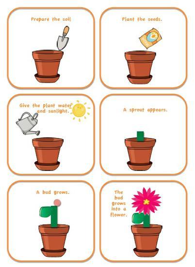 4bestariskkj.blogspot on Plant Life Cycle Printable Book