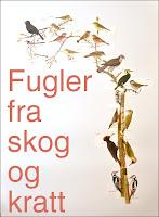 http://kolonihavelivet.blogspot.com/2015/11/fugler-fra-skog-og-kratt.html