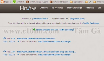 Submit website into the Traffic Exchange Hitleap