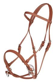 Functional Horsemanship: Bitless Bridles