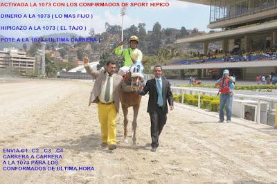 http://www.sporthipico.com.ve/