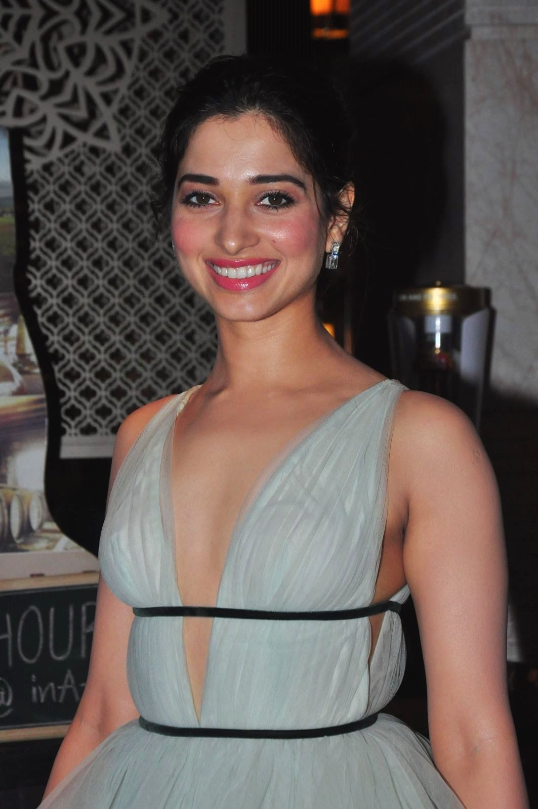 Tamanna Bhatia goes braless in Deep neck gown for South Scope Life Style awards