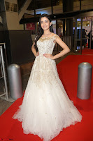 Rukshar Mir designer Anarkali Gown at 64th Jio Filmfare Awards South  2017 ~  Exclusive 115.JPG