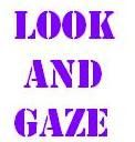 <b>About Look and Gaze</b>