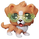 Littlest Pet Shop Series 1 Adorable Adventures Flip Bernardio (#1-109) Pet