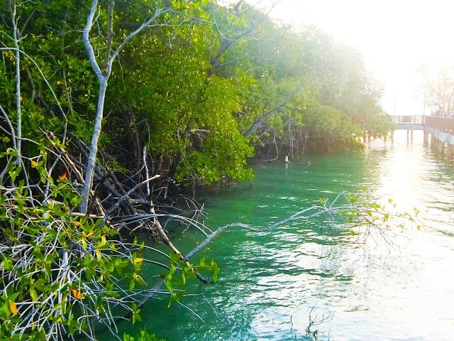 Destinasi Menarik Di Pulau Burung Port Dickson