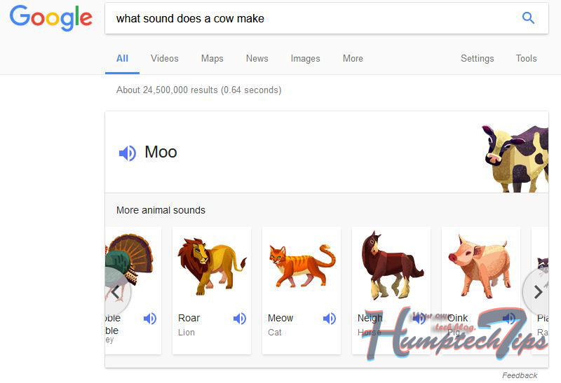 what sound does a cow make