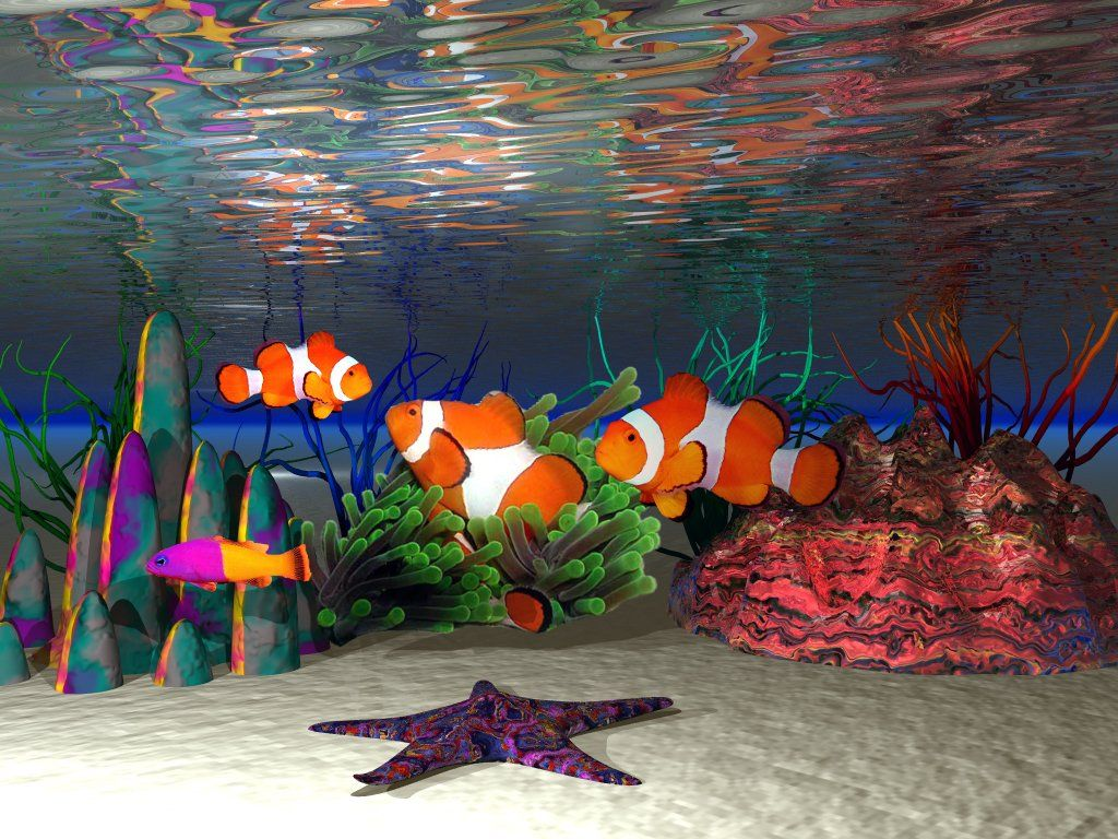 Kumpulan Ikan 2000: Clown Fish