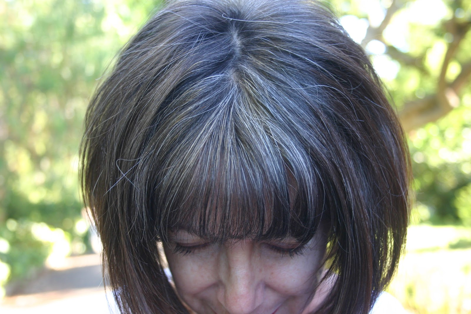 Lowlights For Hair Going Gray