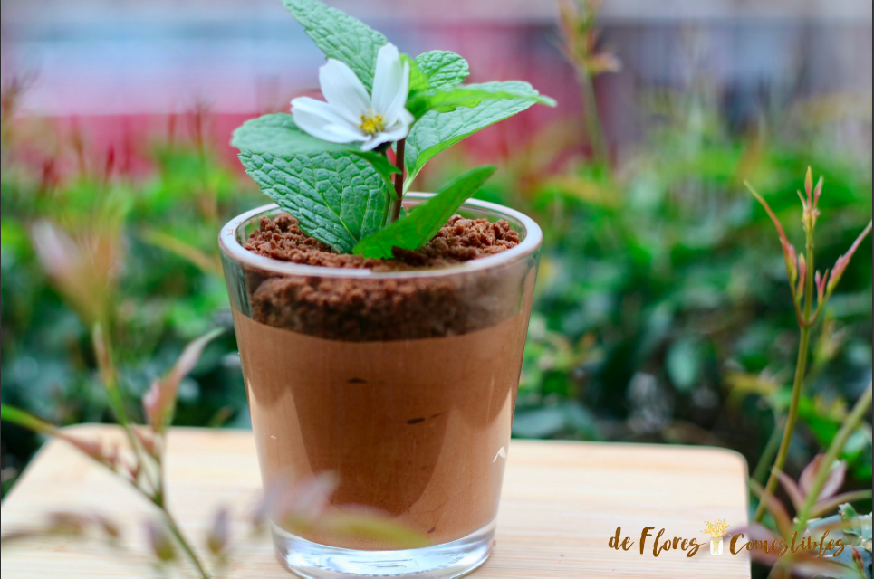 Mousse de chocolate con galletas machacadas que imitan una maceta
