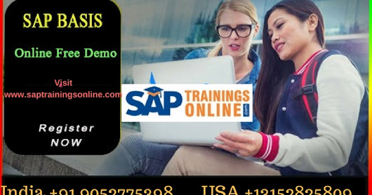 Why SAP BASIS Support is Needed? SAP BASIS E-learning