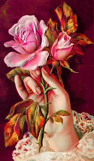 rose flower background printable botanical plant art digital download