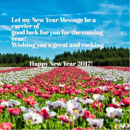 happy new year 2017 friends 2017