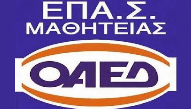 6 ειδικότητες στην ΕΠΑ.Σ Μαθητείας Αργολίδας του ΟΑΕΔ