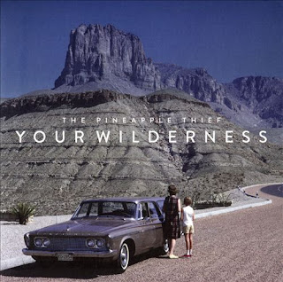 The Pineapple Thief - Your wilderness (2016)