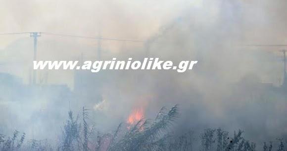 Μεγάλη κινητοποίηση επίγειων και εναέριων μέσων για φωτιά στα Πηγάδια  Ξηρομέρου | Νέα από το Αγρίνιο και την Αιτωλοακαρνανία-AgrinioLike