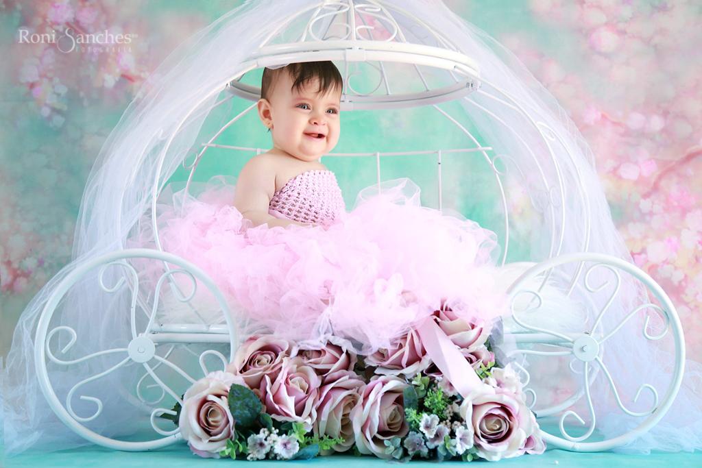 bebê menina em carruagem, carruagem bebê,bebê sp,book bebê sp,book bebê,o melhor fotografo de bebês do mundo,melhor fotografo de bebês do Brasil