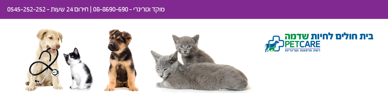 שדמה vet-hospital.co.il BlogSpot