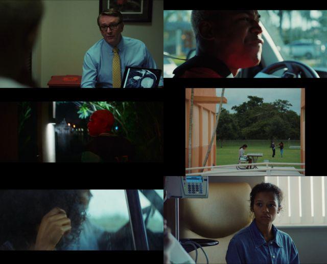 Las olas (2019) HD 1080p y 720p Latino Dual