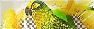 http://wierszami-swiat-pisany.blogspot.com/
