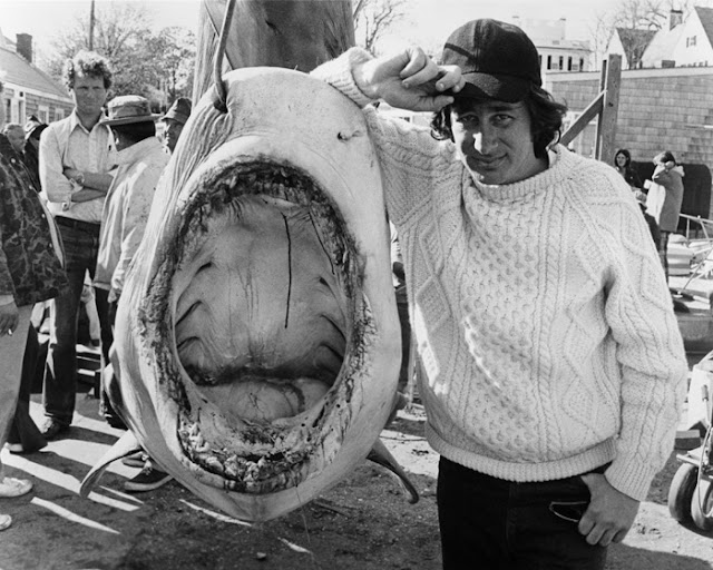 spielberg tiger shark