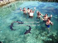 rombongan tamu di penangkaran hiu