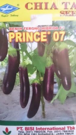 tahan layu, daging keras, buah panjang, tahan virus, hasil tinggi, terong, benih, bibit, Terong Prince 07, Cap Kapal Terbang,
