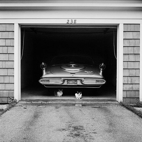 imagenes bellas en blanco y negro, fotos vintage, cool pictures -- Vivian Maier, Untitled, 1957, Car in Garage with Cats.