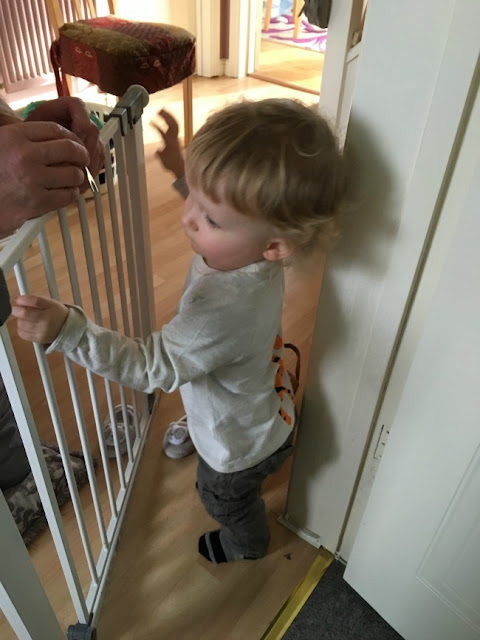 toddler standing by baby gate with hands of adult in view