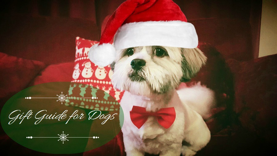 Gift Guide for Dogs, lhasa apso, Christmas dog, Dog in a santa hat, The Style Guide Blog