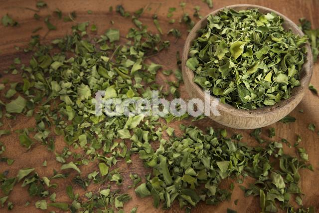 try out Moringa Oleifera now