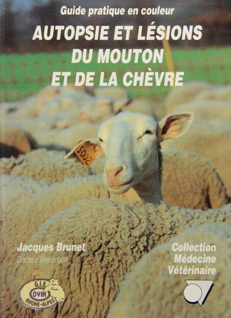 Autopsie et lésions du mouton et de la chèvre guide pratique en couleur - WWW.VETBOOKSTORE.COM