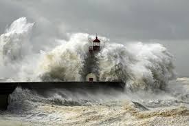 Fronda y el ciclón.Pastor Aguiar