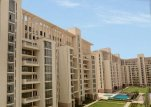 Apartments on rent in SS Group Hibiscus Gurgaon