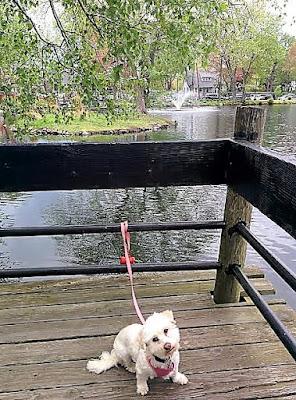 Hecksher Park, Huntington, Long Island NY