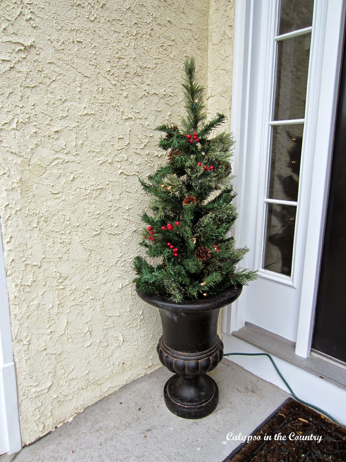 Christmas Tree in urn on front porch